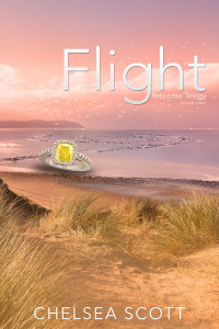 Flight-ebook-webuse